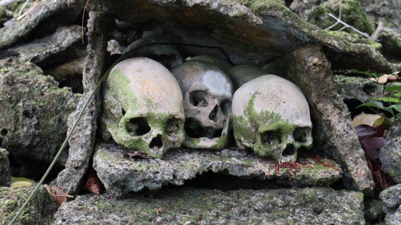 Skull-Island-coral-tomb-e1551919225174