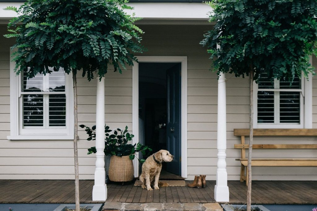 acre-of-roses_interiors_high-res-4-108640-1