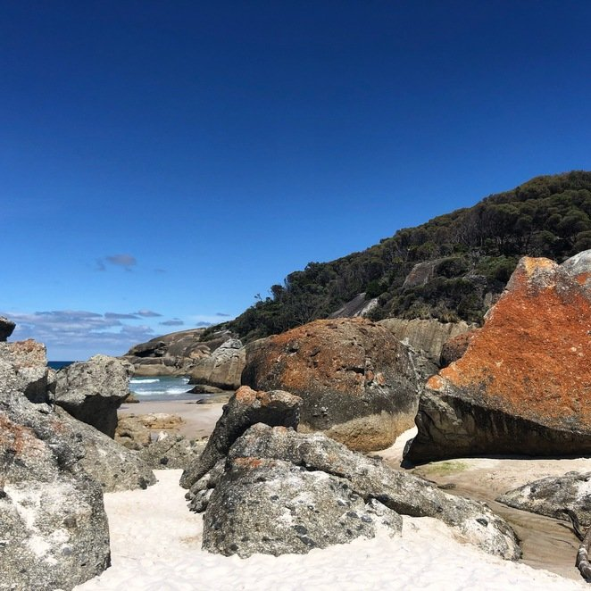 Take a hike to Squeaky Beach from Tidal River carpark